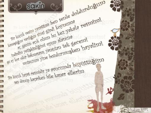 sakinfan_kor1ay